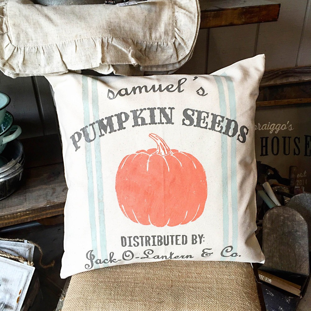 fall pumpkin seeds pillow ar workshop