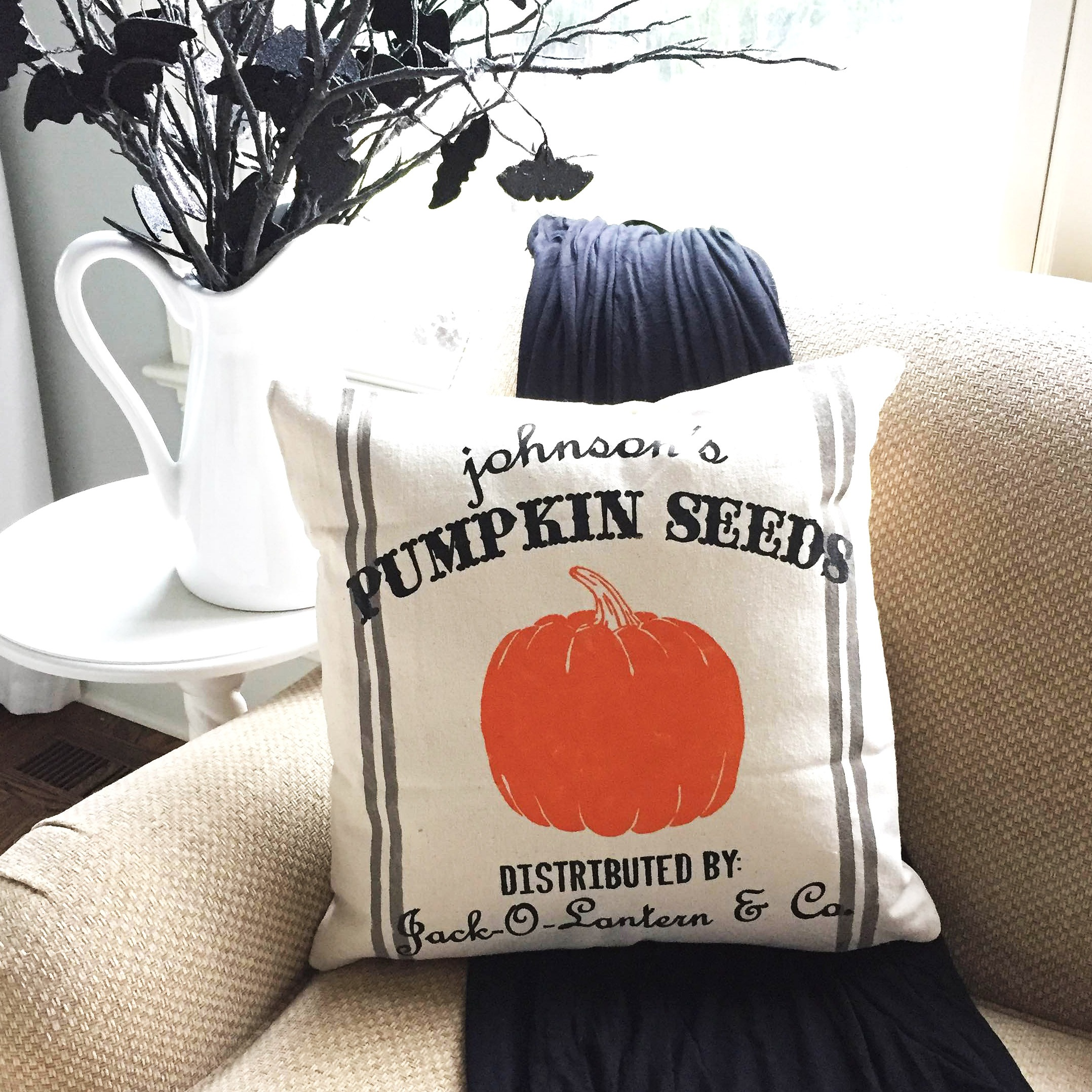 pumpkin seeds halloween pillow ar workshop