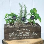 home grown fresh herbs mini centerpiece box