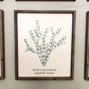 coral series tubular coral framed sign 18x21