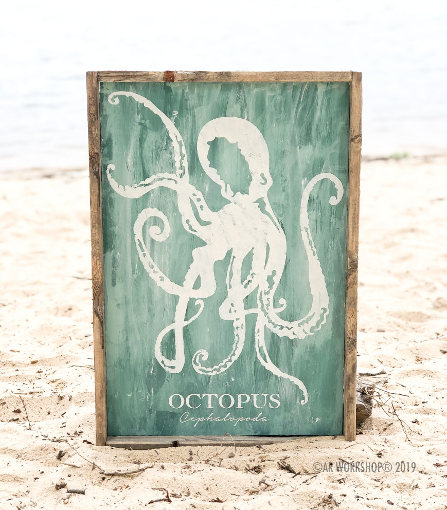 octopus classification frame sign 18x26
