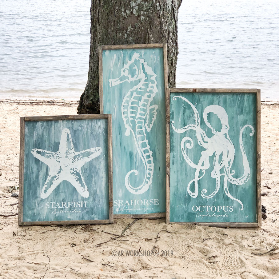 starfish seahorse octopus classification collection framed