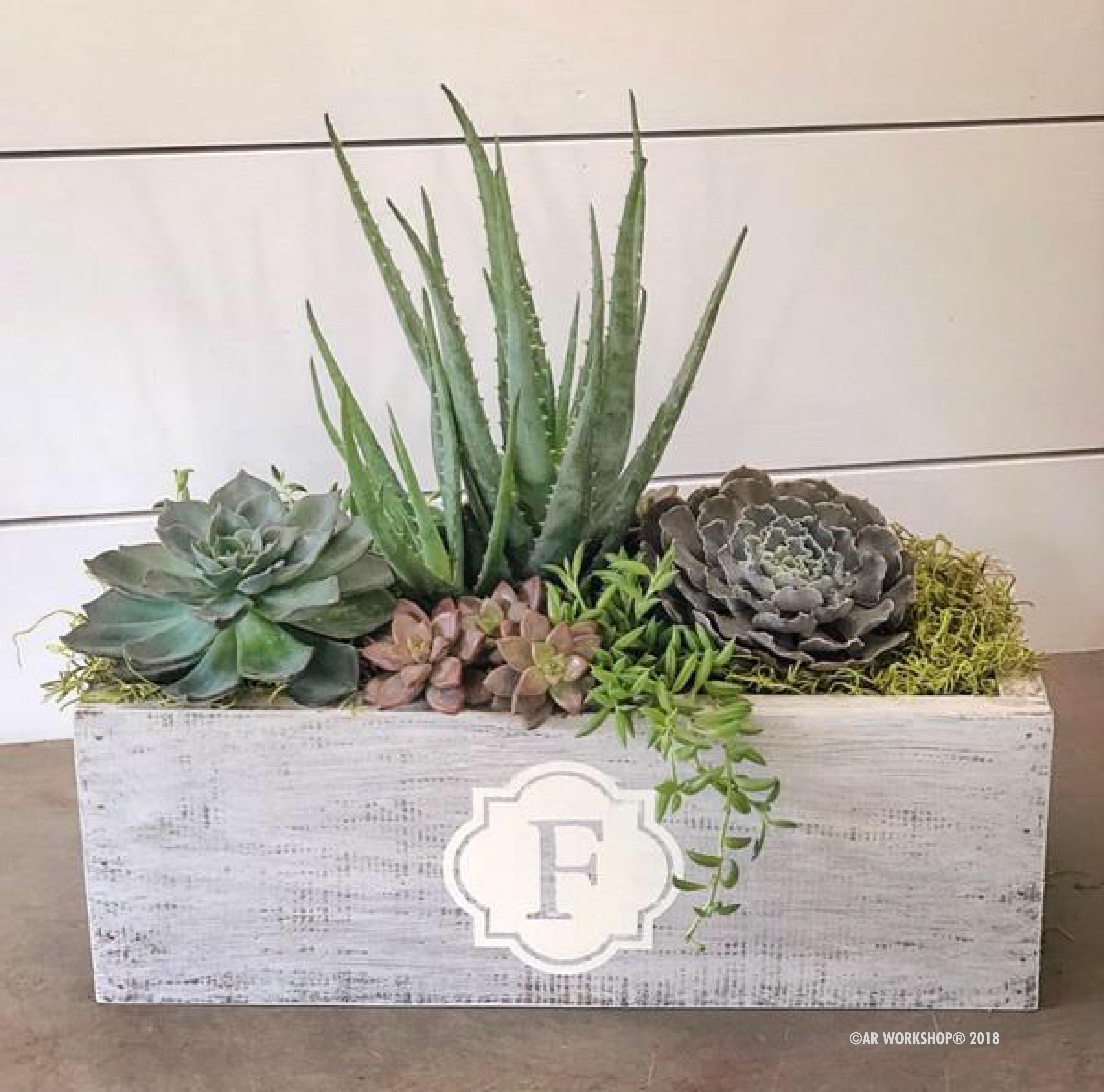 "quatrefoil initial centerpiece box 16"" succulent"