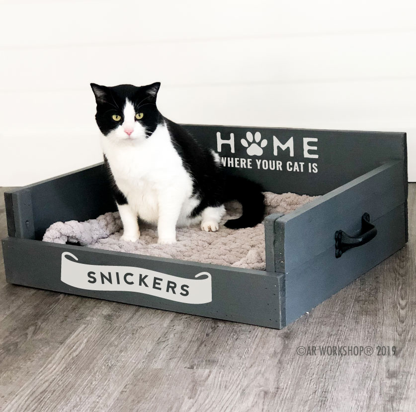 home is where your cat is pet bed