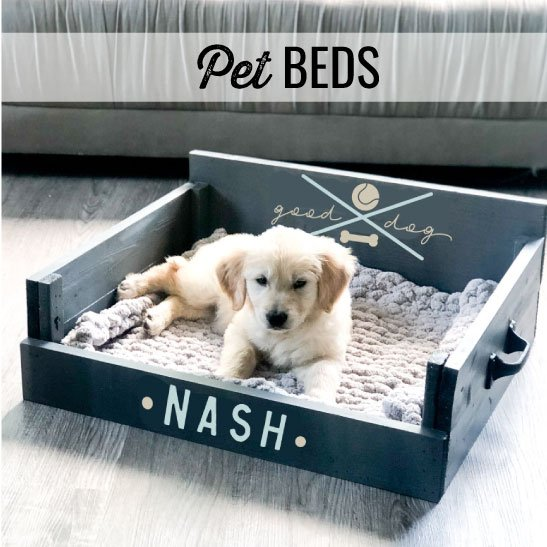 pet beds header