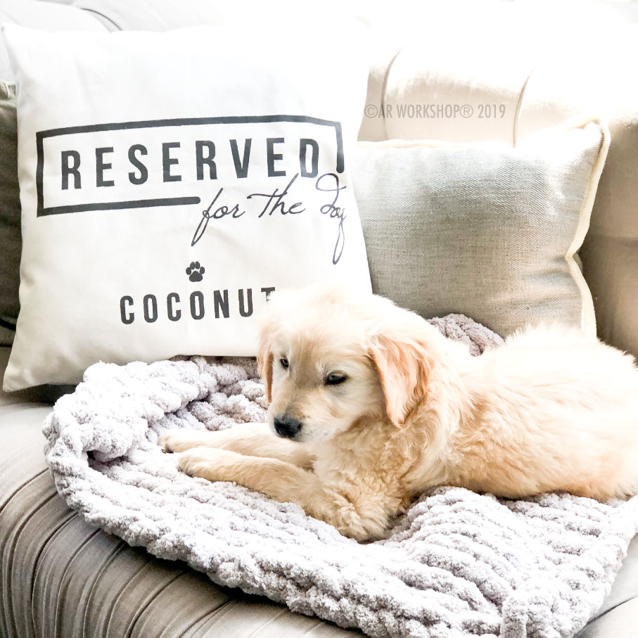 reserved for the dog canvas pillow