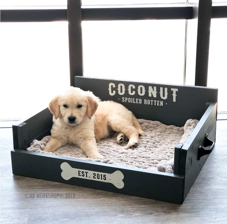 spoiled rotten established pet bed