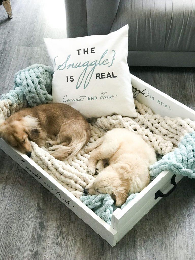 diy pet beds